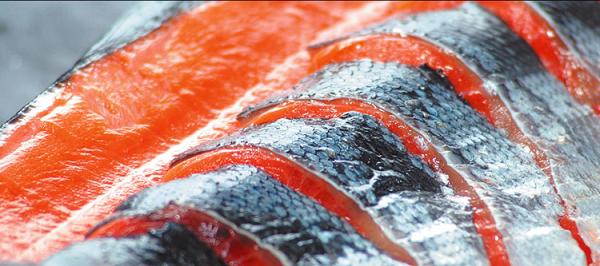 紅鮭切り身、時鮭、鮭児などギフトでも喜ばれる高級鮭通販ランキング。口コミランキング上位常連の紅サケの切り身、時鮭(ときしらず)、新巻鮭、鮭児(ケイ)ジなどの高級鮭を比較してまとめてみました。美味しい!高級鮭選びにお役立ち出来たら幸いです。高級鮭通販ランキング北海道網走水産600