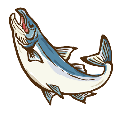 高級鮭通販ランキング400