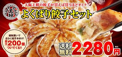 大阪王将通販よくばり餃子セット