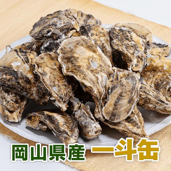牡蠣一斗缶通販岡山