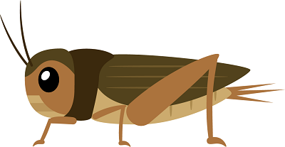 昆虫食通販ランキングイラスト2-400。昆虫食通販,昆虫食,通販,食用昆虫,食用昆虫通販,食べられる虫,昆虫料理,未来食,カブトムシ,シロアリ,昆虫スナック,ドライ,粉末,パウダー,コオロギ,サソリ,タランチュラ,イナゴ,蜂の子