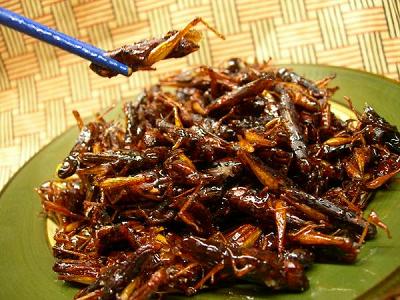 昆虫食、食用昆虫通販イナゴの佃煮。昆虫食通販,昆虫食,通販,食用昆虫,食用昆虫通販,食べられる虫,昆虫料理,未来食,カブトムシ,シロアリ,昆虫スナック,ドライ,粉末,パウダー,コオロギ,サソリ,タランチュラ