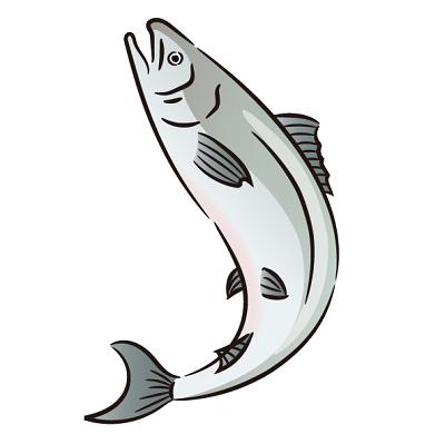 時鮭通販、トキシラズ通販おすすめランキング、早わかりまとめです。北海道の高級鮭トキシラズ、時鮭は脂のりが良くて美味しく、ギフトとしてもとても喜ばれます。トキシラズ(時鮭)お取り寄せを一覧で比較しています。高級鮭トキシラズ時鮭通販おすすめランキングイラスト1