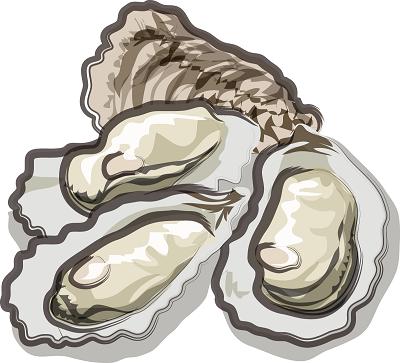 牡蠣通販生牡蠣おすすめランキングイラスト-1。生牡蠣通販ランキング,生牡蠣通販おすすめ,生牡蠣,通販,おすすめ,ランキング,生食用,一斗缶,むき身,岩牡蠣,岩ガキ,広島,三重,伊勢,北海道,宮城,安全,食べ比べ,仙鳳趾,坂越,室津,殻付き牡蠣,寄島,あっけし,イワガキ,カンカン焼き,牡蠣通販,牡蠣お取り寄せ