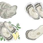 牡蠣のカンカン焼きおすすめランキング、比較して一覧でまとめました。牡蠣カンカン焼き、広島、北海道厚岸、播磨灘、鳥羽、宮城三陸、岡山etc全国のカキ通販で人気のショップ、セットを大手通販口コミランキングなどからピックアップ、価格、特徴などを簡単にまとめています。牡蠣通販生牡蠣カンカン焼きイラスト-9