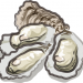 生牡蠣通販ランキング、おすすめの生食用牡蠣お取り寄せなど簡単に比較してまとめています。一斗缶、カンカン焼き、安全な生牡蠣、口コミランキング常連の人気の広島、北海道、宮城、伊勢など三重の牡蠣、岩牡蠣(イワガキ)、牡蠣食べ比べなど生牡蠣通販の簡単まとめです。牡蠣通販生牡蠣おすすめランキングイラスト-1